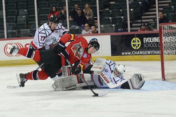 Trenton Titans Hockey Fall   2013