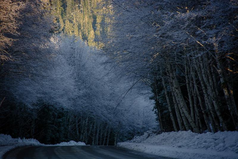 Winter Scene, Juneau, AK
