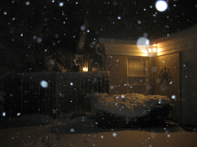 Snow_in_Jackson_2009-02-28.JPG