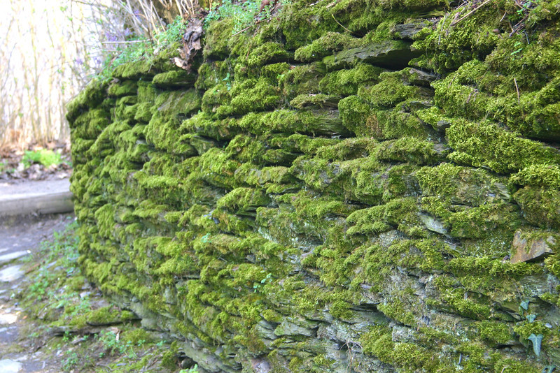 Bacharach, Germany stone wall
