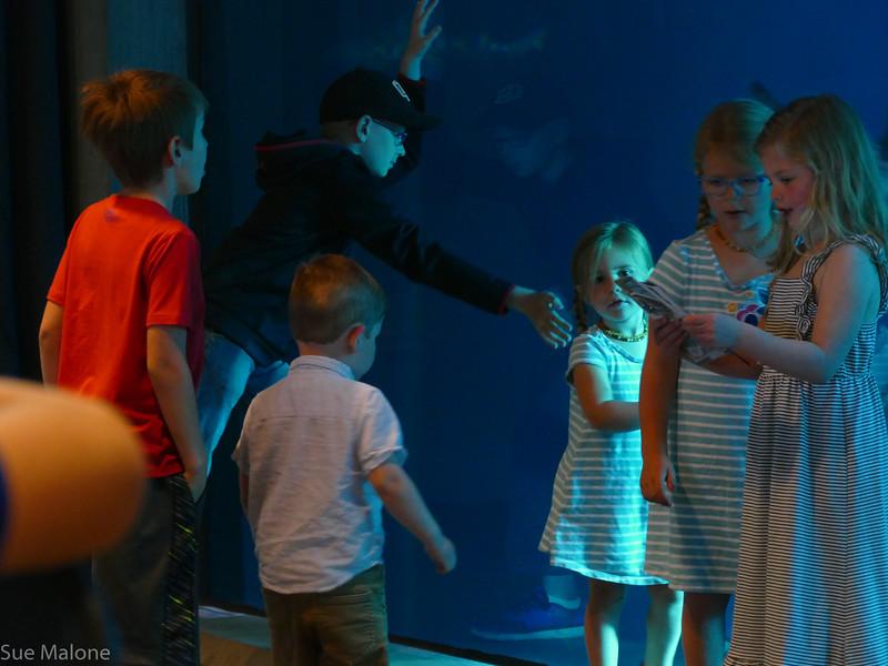 Rogers memorial at the aquarium (6 of 71).jpg