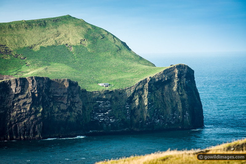 Suðeray, Vestmannæyjar. The building is a clubhouse for locals who sometimes visit the island for fishing or catching puffins. The sheep perched along the cliff edge and thousands of birds are the only current residents.