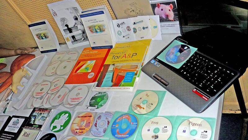 CD ROMs.jpg