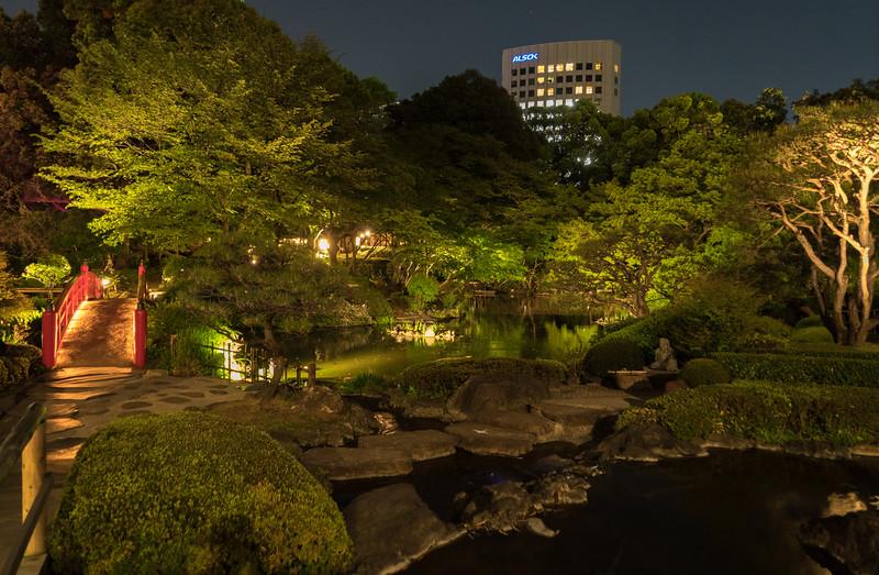Tokyo-300543.jpg