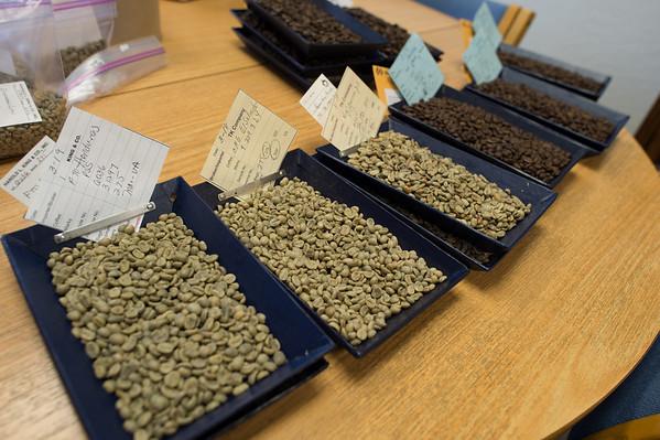 Rie Coffee Green Beans