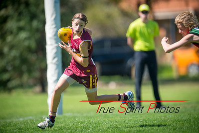 Preliminary Final N/C Yr 9 Red Quinns Thunder vs Warwick Greenwood Knights 09.09.2018
