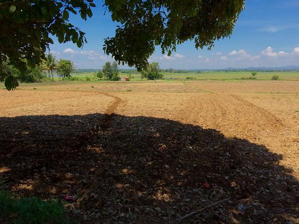 Thotadahalli-Chikmagalur-April-2015