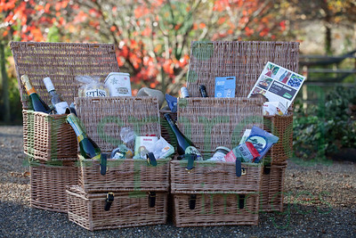 Browns - Hampers