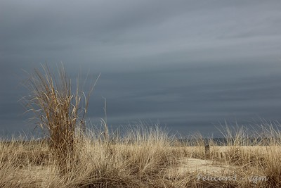 Winter Grey is ok . . . if you're at the beach!!!