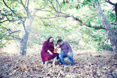 GARCES FALL FAMILY SESSION 2019