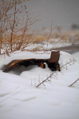 Winter's Grasp 2009!