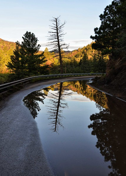 NEA_6709-5x7-Reflection.jpg