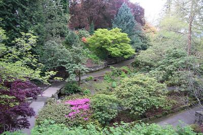 Crystal Springs Rhododendren Park Portland OR