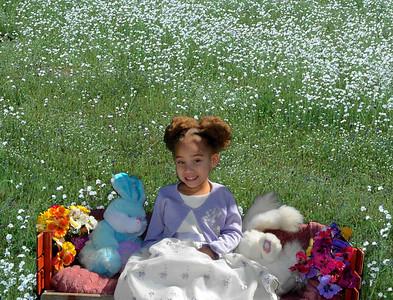 Jones Easter Mini