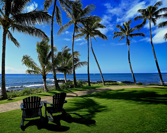 Palm Trees and Rocking Chairs
