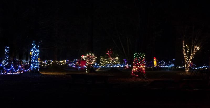 Williams Park Christmas