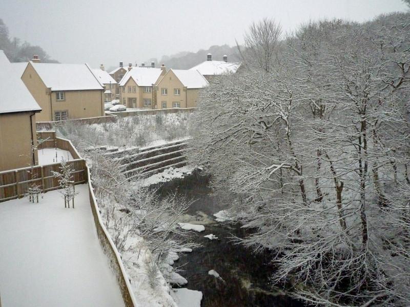28-11-2010 first snow © Marta