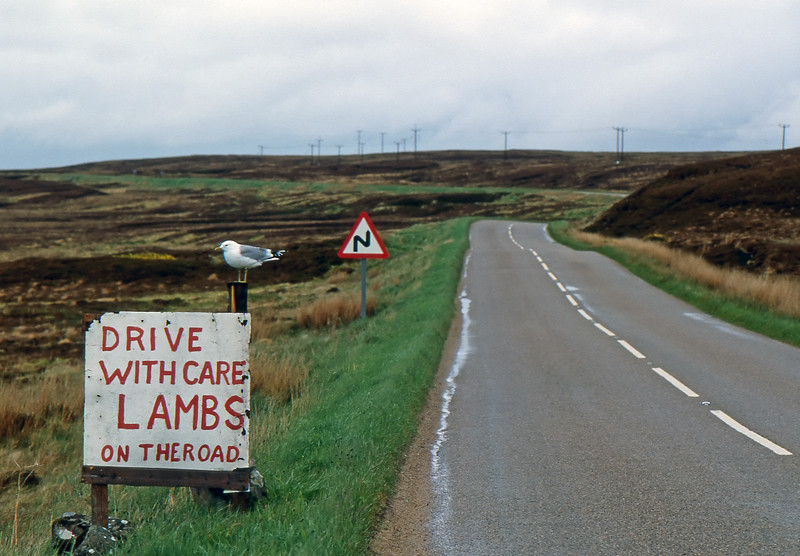 Drive with Care - Between Tongue and Reay, Scotland, UK - May 29, 1989