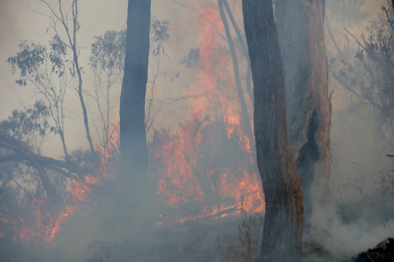 11. Australia Bushfires_12.JPG