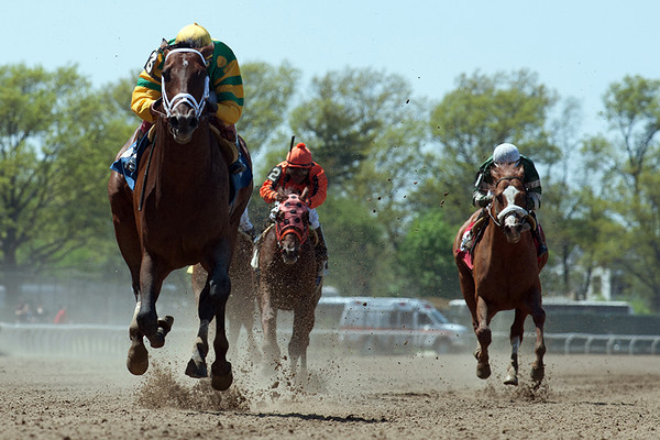 Man  o'War Day Belmont Park 5.11.14