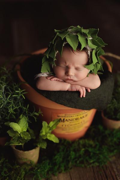 Isaiah - Newborn