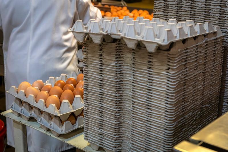 Eggs 48.jpg