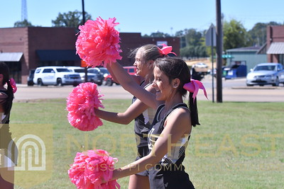 2018-10-11 CHEER Cheerleading Breast Cancer Support at Pep Rally