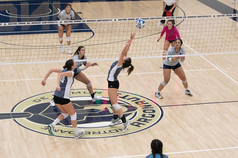 HPU Volleyball-92715.jpg