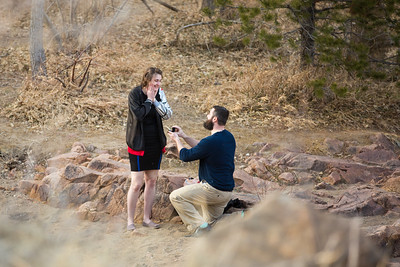 Athena & Andrew's Proposal