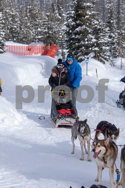 dog sled 5.jpg