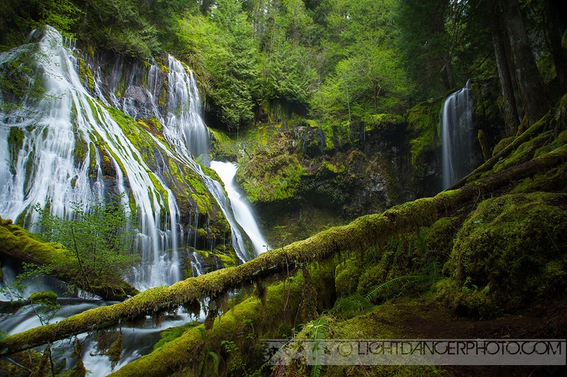 Pacific NW - Panther Creek Falls.jpg