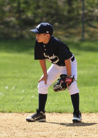 2011 Lakeland Yankees