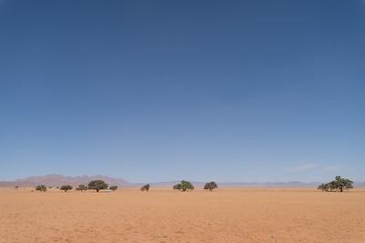 Namib Naukloft