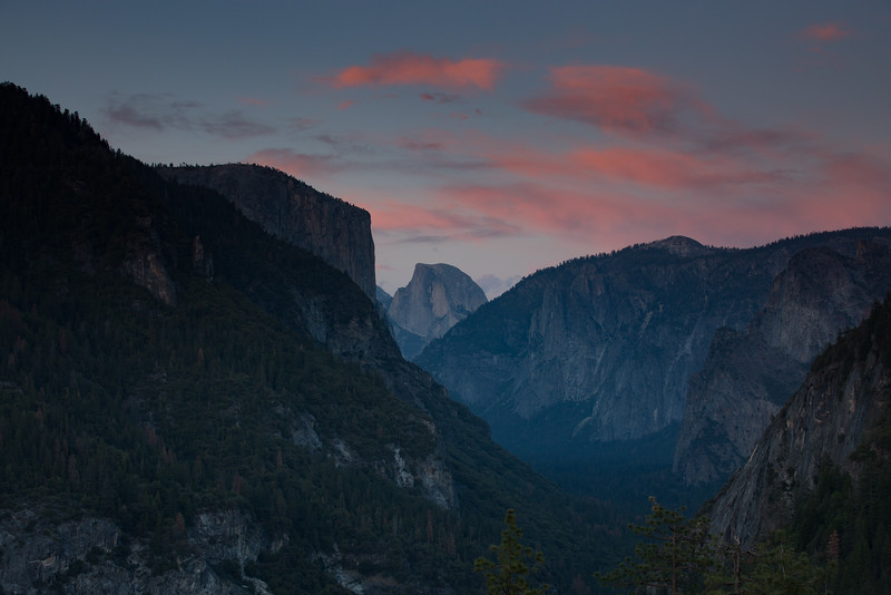 20150504-Yosemite-5D-128A1313.jpg