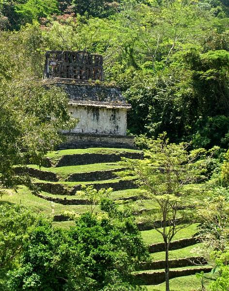 Palenque, Mexico. 2007