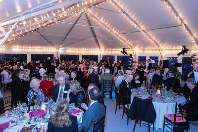 100 and Counting Gala Fundraiser 4/29/26