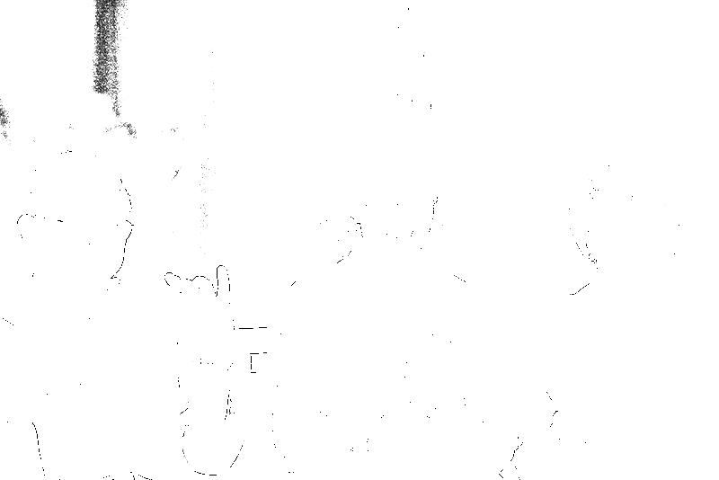 DSC05423.png