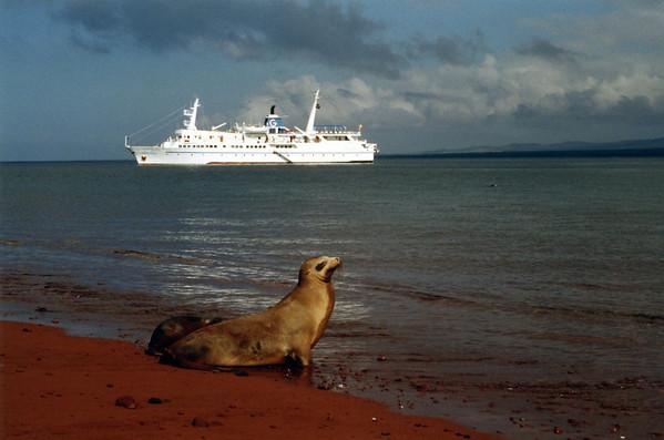 Galapagos - Ecuador