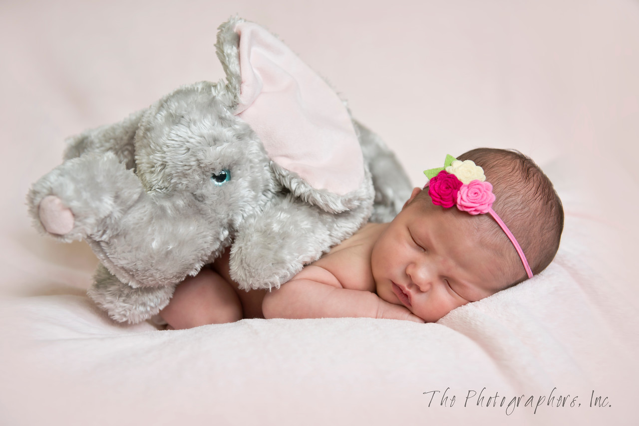 typical newborn5