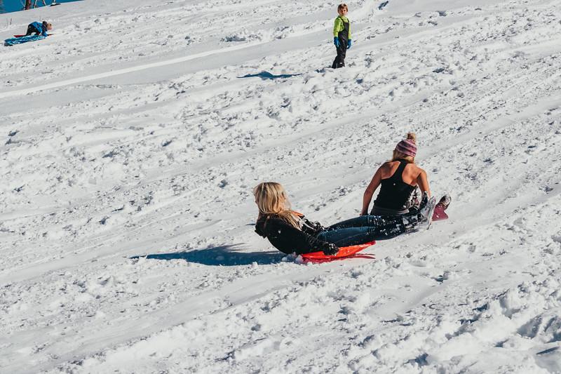 snowMLK-2510.jpg