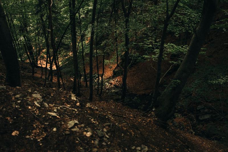 190703_Alp Collo_Web-13.jpg