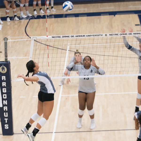 HPU Volleyball-92979.jpg