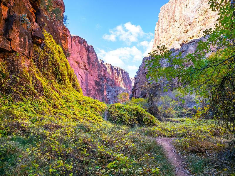 Arizona-133.jpg