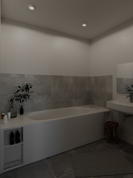 velux-gallery-bathroom-092.jpg