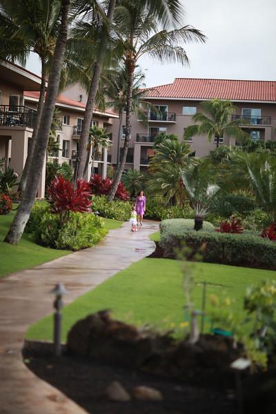 Kauai_D4_AM 026.jpg