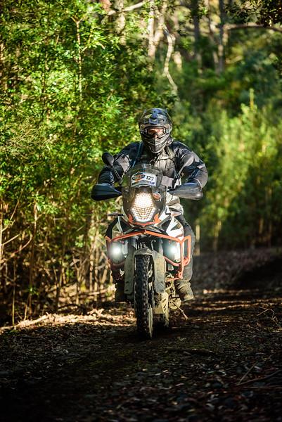 2019 KTM Australia Adventure Rallye (590).jpg