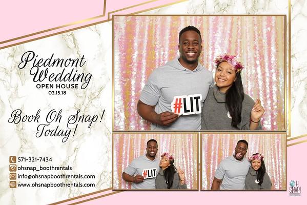 2019 Piedmont Wedding Show