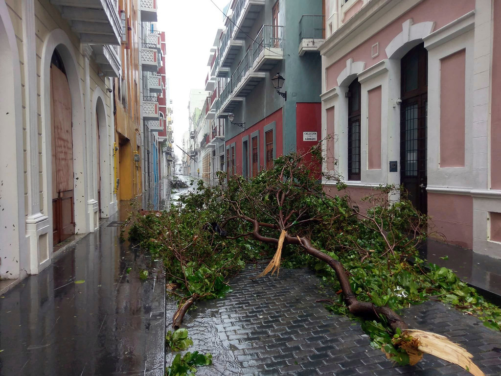 . In this photo provided by Jason Heskew, a downed tree blocks a street during Hurricane Maria in Old San Juan, Puerto Rico, Wednesday, Sept. 20, 2017. The strongest hurricane to hit Puerto Rico in over 80 years tore off roofs and doors, knocked out power across the entire island and unleashed heavy flooding. (Jason Heskew via AP)