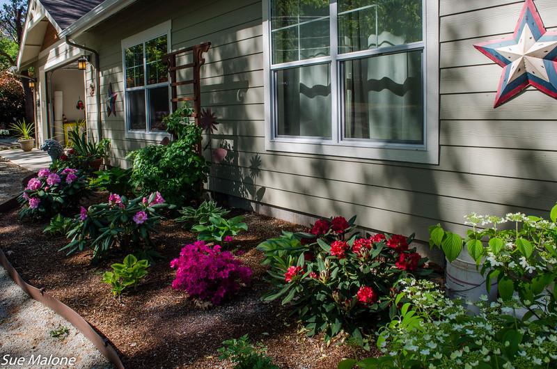 05-03-2019 Spring at Sunset House-20.jpg