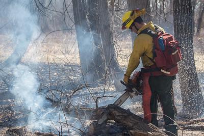 Cherry Creek Brush Fire